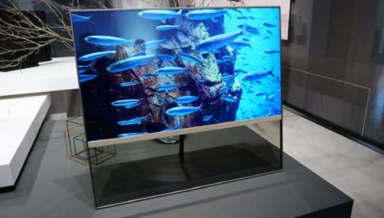 panasonic-transparenter-oled_6077920